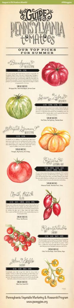 PA-Produce-Top-Tomato-Picks-Summer