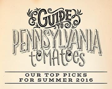 Tomato-Guide-Thumbnail