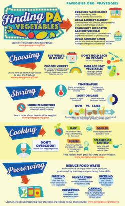 Veggie-Info-Overview-Infographic