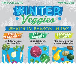 winter-veggies-thumbnail