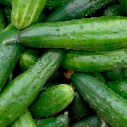 Cucumbers-Image