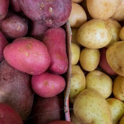 Potatoes-Image