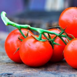 Tomatoes-Image