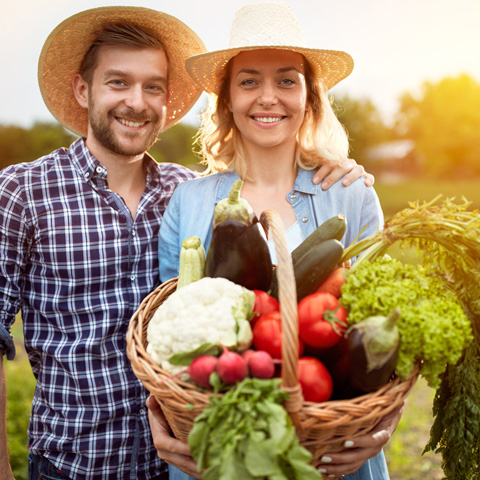 farmer-couple-with-basket-of-vegetables-thumb