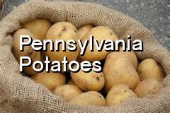 pa_potatoes